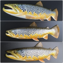 "20"" brown trout wall sculpture"